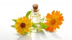 La caléndula es una planta con propiedades muy beneficiosas para la piel