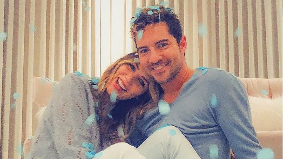 David Bisbal y Rosanna Zanetti ya saben el sexo del bebé que esperan