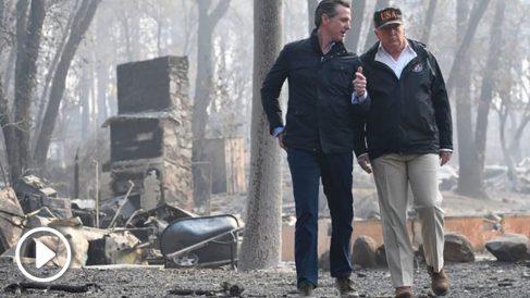 Donald Trump visita la localidad de Paradise, una de las zonas devastadas por el incendio de California. Foto: AFP