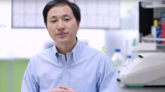 El investigador He Jiankui de Shenzhen del laboratorio chino He LAb explicando cómo han logrado los bebés modificados genéticamente.