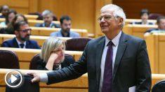 Josep Borrell en el Senado (EFE).