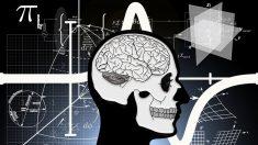 El cerebro sabe el momento en que has muerto