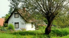 Las casas rurales para pasar la Navidad ayudan a disfrutar del aire puro