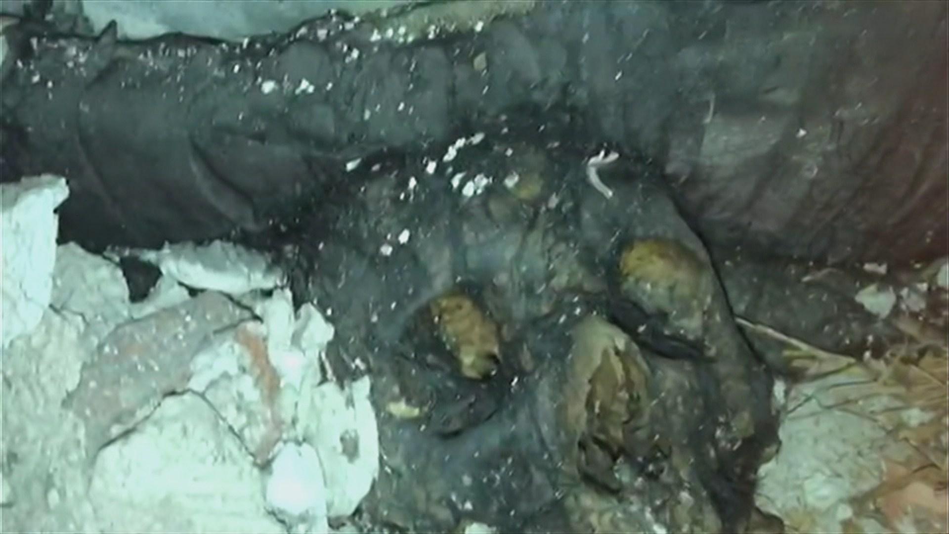 Carmena sube las tarifas de la Funeraria remunicipalizada que no levanta cabeza