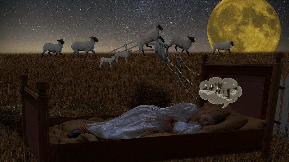 ¿Quién no se ha puesto a contar ovejas?