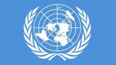 La Declaración Universal de los Derechos Humanos se establece el 10 de diciembre de 1948 | Efemérides del 10 de diciembre de 2018