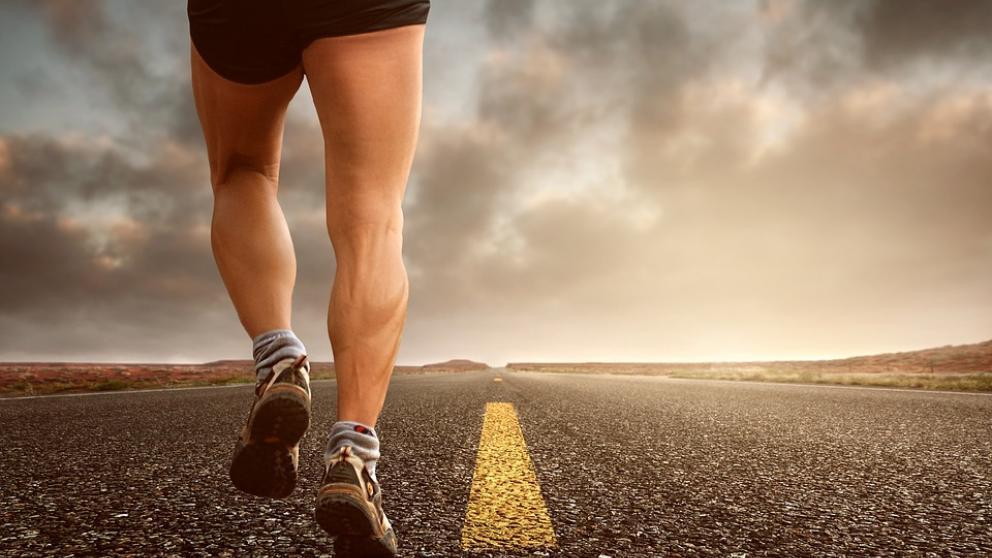 Los músculos de las piernas que nos permiten entre otras cosas correr.