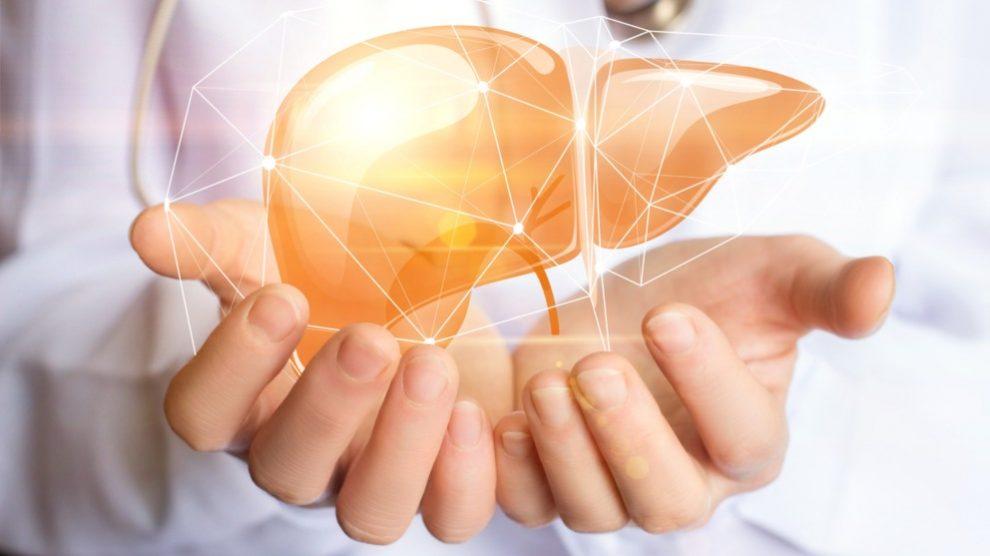 Qué alimentos evitar para no dañar el hígado
