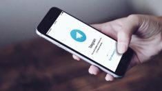 Si no quieres utilizar WhatsApp, hay alternativas muy interesantes y eficaces