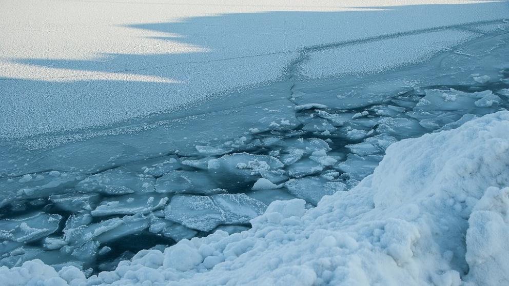 El Ártico sufre los años más cálidos del último siglo según un nuevo informe