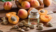 Las semillas de albaricoque también poseen propiedades nutricionales beneficiosas.