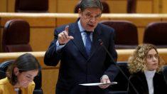 Luis Planas, ministro de Agricultura, en el Senado.