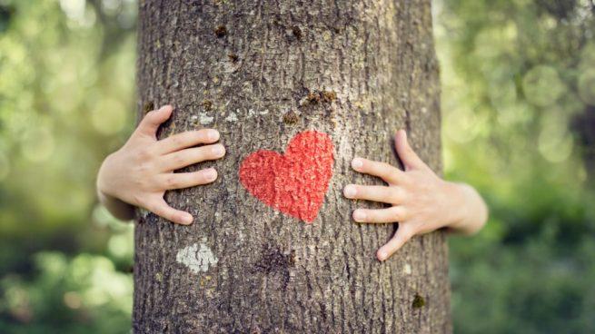 abrazar a un árbol