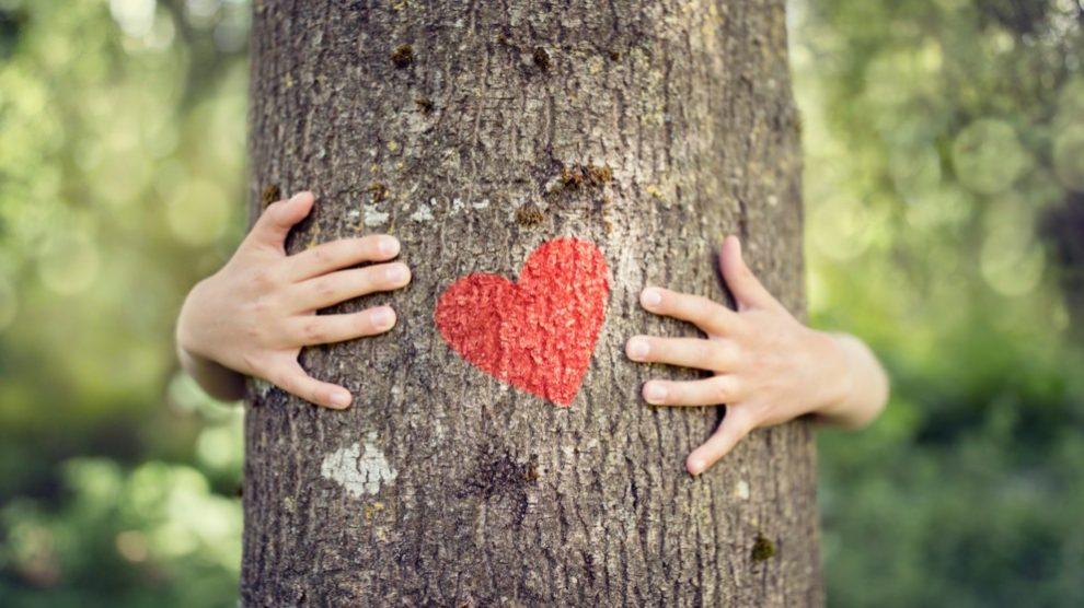 Nada mejor que abrazar a un árbol, pues aporta miles de beneficios para tu estabilidad emocional