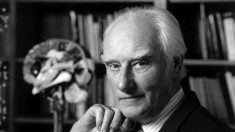 Lee grandes frases de Francis Crick