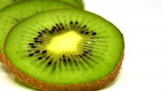Es importante tomar frutas de temporada porque su valor nutricional es mucho mayor, de modo que resultan más saludables.