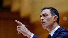 Pedro Sánchez, presidente del Gobierno. Foto: EFE