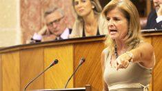 Esperanza Oña es diputada delParlamento de Andalucía y es más que conocida su línea cercana a Pablo Casado. Foto: Parlamento de Andalucía