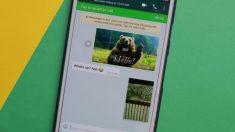 El modo PIP es una interesante nueva funcionalidad en WhatsApp para ver vídeos