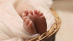 Las patadas en el vientre de su madre les sirven para conocer también el entorno