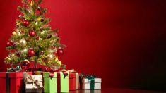El niño ha denunciado a Papá Noel tras ver que en el árbol no estaban sus regalos