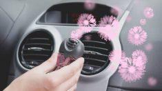 Guía de pasos para eliminar el olor a coche nuevo