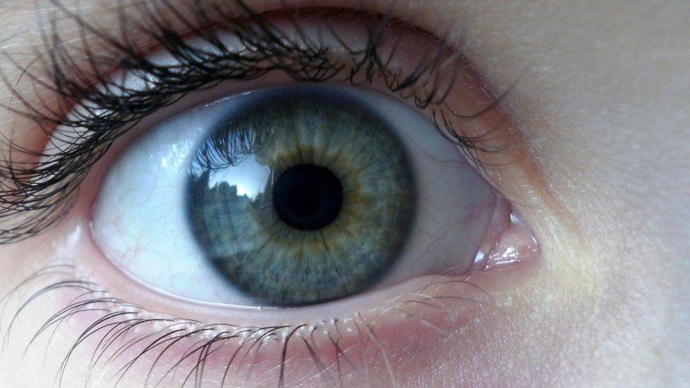 Descubre una tecnología nueva permite a los pacientes de esclerosis controlar computadores con la vista