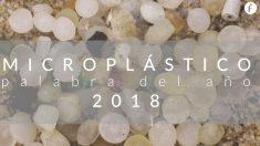Microplástico palabra del año 2019 para Fundeu