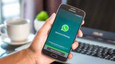WhatsApp Business resulta muy útil para las empresas