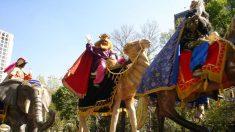Horario y recorrido de la Cabalgata de los Reyes Magos 2019