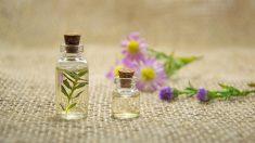 Si quieres reutilizar frascos de perfume, puedes hacerlo de varias maneras
