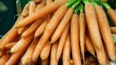 Las zanahorias permiten combatir la flacidez del rostro.