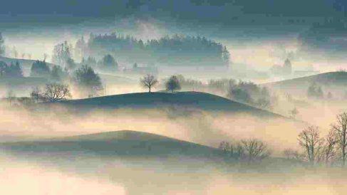 La cencellada aparece con la niebla y las bajas temperaturas.