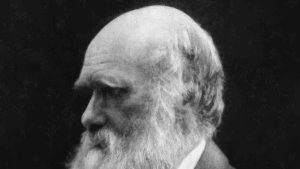 Conoce la secreta enfermedad de Charles Darwin