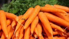Ventajas de comer zanahoria en el embarazo