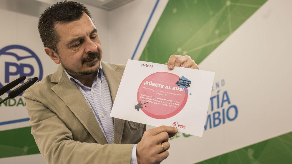 Toni Martín (PP-A). Foto: Europa Press