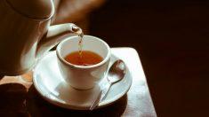 Consecuencias adversas de tomar té en el embarazo