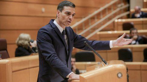 Pedro Sánchez. Foto: Europa Press