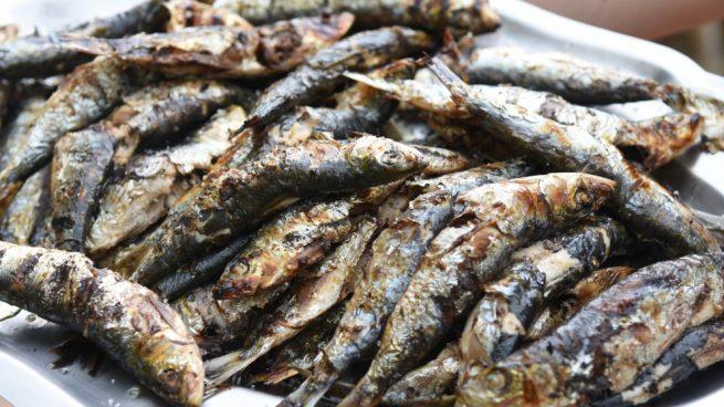 Image result for sardinas