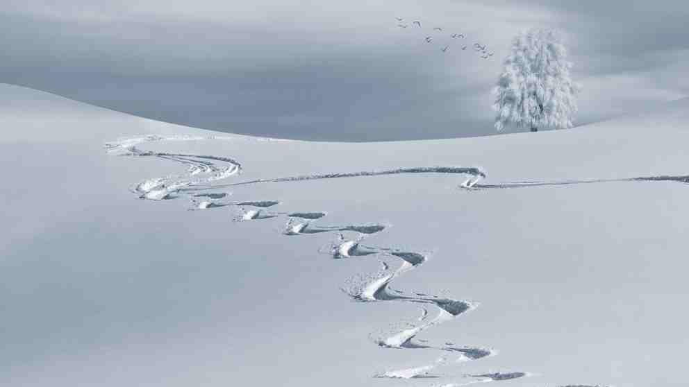 La nieve un particular fenómeno atmosférico.