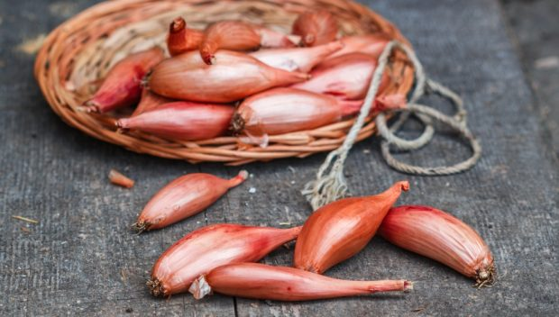 Receta de ternera estofada con cebollas