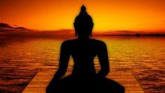 Conoce más sobre Shiva