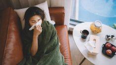 Guía de pasos para curar la gripe con remedios caseros