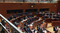 Grupo parlamentario de Podemos este jueves en la Asamblea de Madrid. (Foto. OKDIARIO)