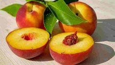 El melocotón, una fruta de lo más apreciada.