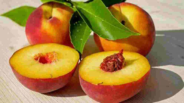 Receta de flan de fruta