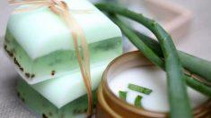 Guía de pasos para saber cómo hacer jabón de aloe vera