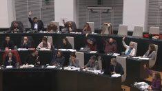 Los seis ediles de IU y Ganemos votando en contra de Carmena. (Foto. YouTube)