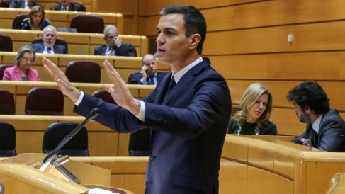 Pedro Sánchez. Foto: Europa Press