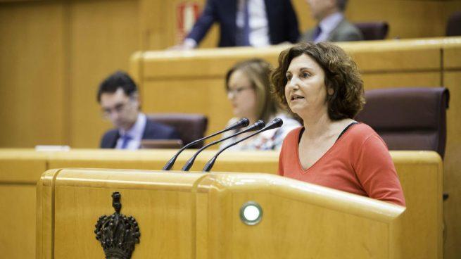 La senadora por Guipúzcoa Pilar Garrido sustituye a Ramón Espinar como portavoz en el Senado